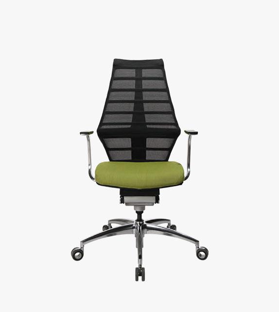 Wagner W5 人體工學椅